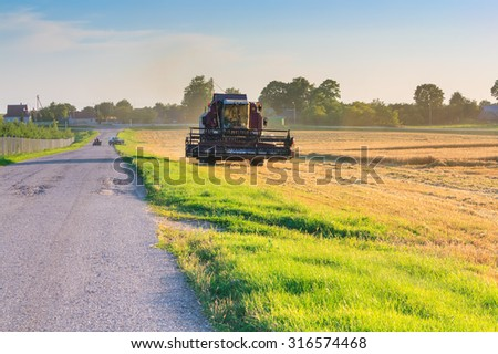 Farmer in tractor driving through the field and reaping wheat