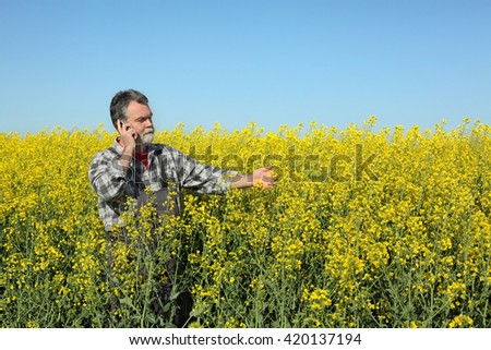 Farmer  inspect quality of canola field and speaking with mobile phone - stock photo