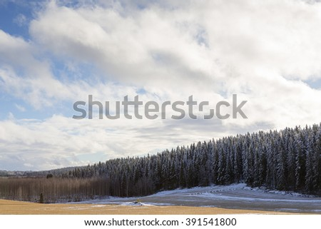 Farmer is waiting for summer. An image of a wheat field during winter. Some clouds are in the sky and snow in the forest. Sun is shining. The spring is coming soon. - stock photo