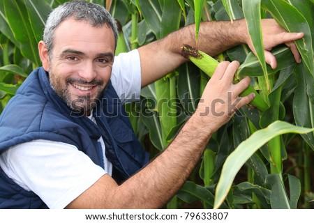Farmer kneeling by crop - stock photo