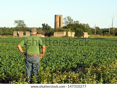 Farmer looks at the foundation of his old barn while checking what appears to be a bumper crop of soybeans for this year's harvest.