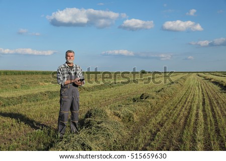 Farmer or agronomist examine clover plant in field after harvest, using tablet
