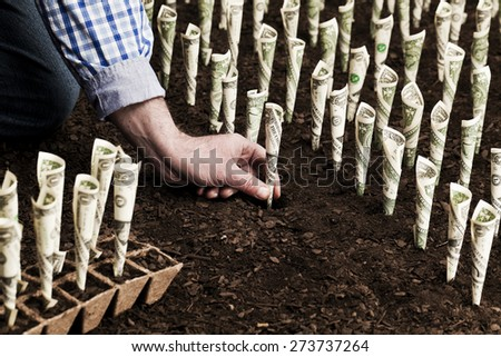 Farmer planting money Business and investment concepts - stock photo