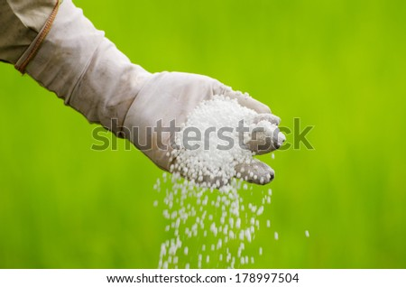 Farmer pouring chemical fertilizer (urea) over green background - stock photo