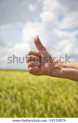 Farmer's hand symbolizes a good harvest - stock photo