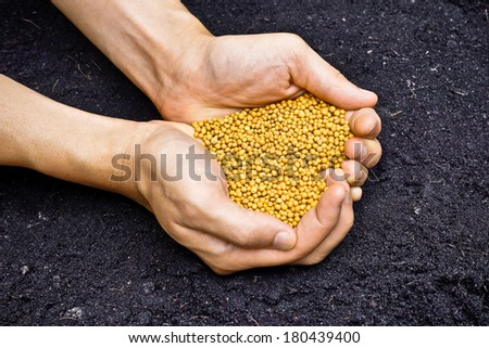 farmer's hands holding yellow chemical fertilizer as a heart shape with soil background - stock photo