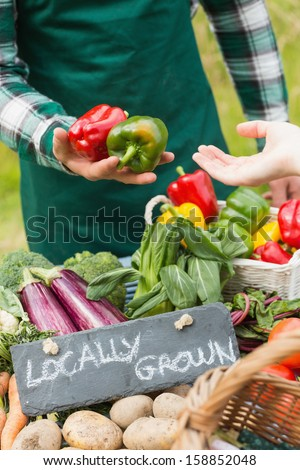 Farmer selling organic peppers at a farmers market - stock photo