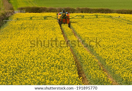 Farmer spraying his rape seed crop, also known as canola and increasingly used for bio fuel production. - stock photo