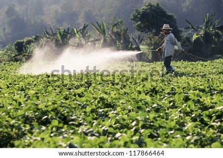 Farmer spraying pesticide on soy field - stock photo