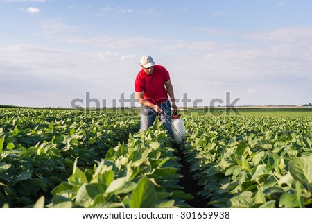 Farmer spraying soybean field