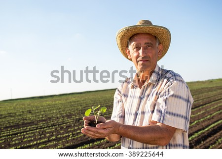 Farmer standing in a wheat field. - stock photo