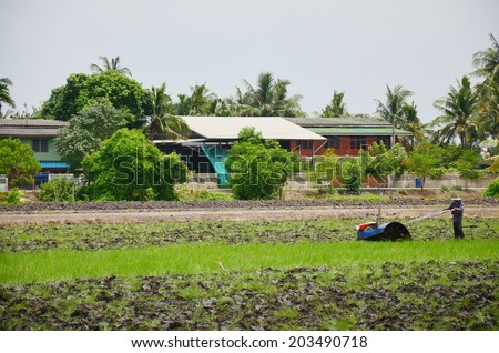 Farmer use Tractor and Trailer towing on Paddy and rice field Background at Thailand - stock photo