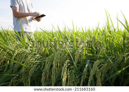 farmer using tablet - stock photo