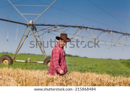 Farmer with hat standing in wheat field with irrigation system in background  - stock photo
