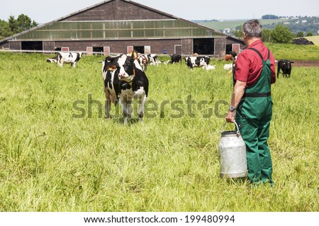 farmer with milk churns at his cows - stock photo