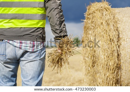 Farmer with straw in hand near straw bale