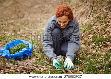 Farmer woman picking fresh nettle leaves with protection gloves