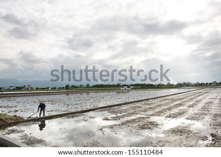 Farmer working in new rice field which is waiting for seeding, near sunset, YiLan, Taiwan.