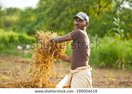 Farmer working in the farm rural village Salunkwadi, Beed, Maharashtra, India - stock photo