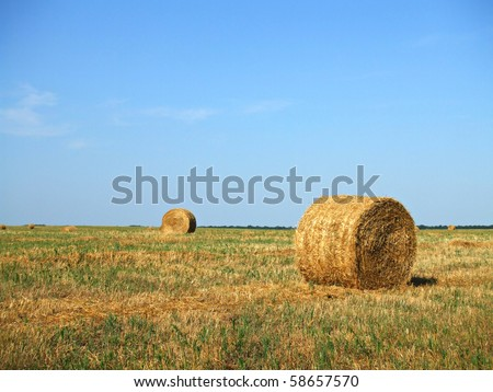Farmers field with hay bales after cropping - stock photo