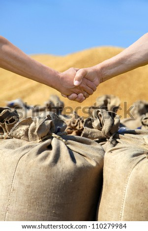 Farmers hands at sack with harvest wheat ba?kground. - stock photo