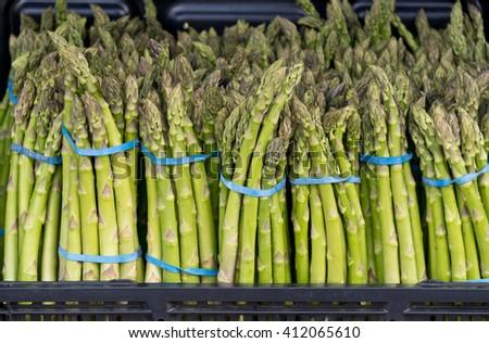 Farmers Market Fresh Cut Asparagus  - stock photo