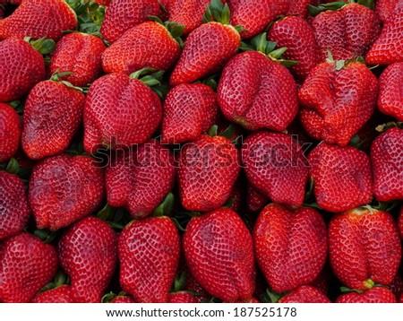 farmers market series  fresh strawberries - stock photo
