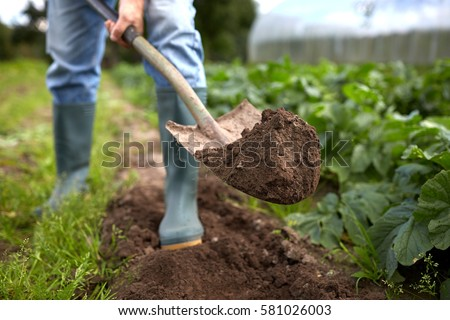 farming gardening agriculture and people concept man with shovel digging garden bed or