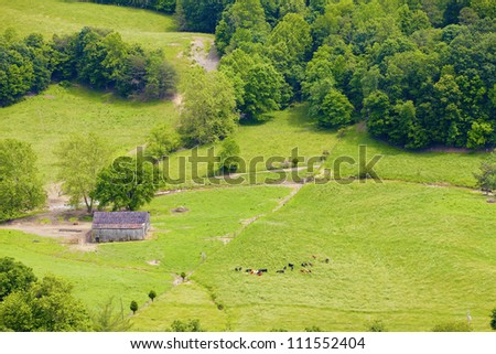 Farmland and cattle - stock photo