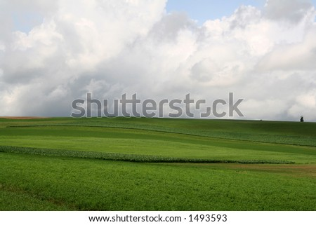 Farmland Hills - 1 - stock photo