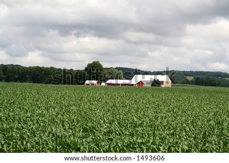 Farmland Hills - 14 - stock photo