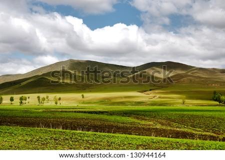 farmland in Inner-Mongolia - stock photo