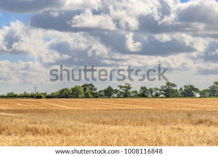 Farmland in Suffolk during harvest time