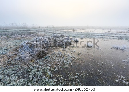 Farmland on a cold misty winter morning with hoar frost - stock photo