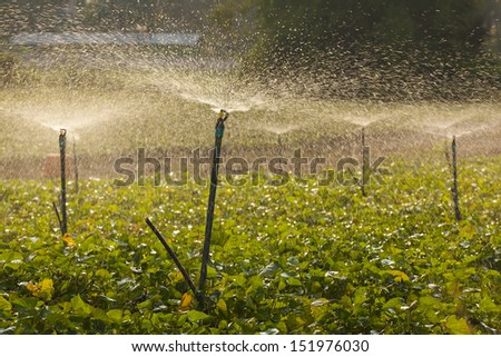 Farms with water. - stock photo
