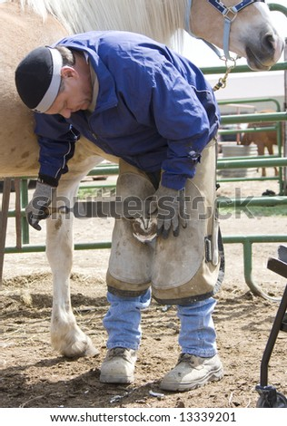 Farrier working on a horse hoof - stock photo
