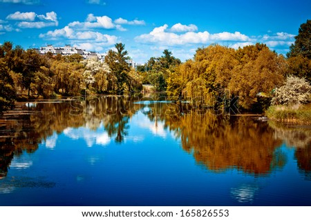Fascinating landscape, trees reflected in the river