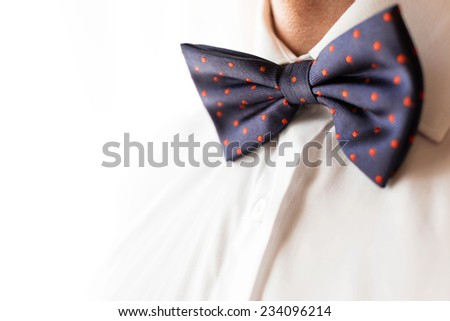 Fashionable groom wearing a bowtie on his wedding day - stock photo