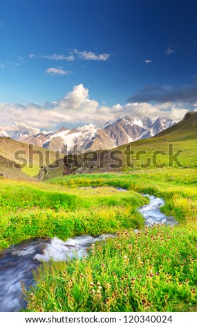 Fast creek om green meadow. Natural summer landscape - stock photo