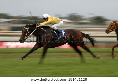 Fast motion image of a thoroughbred race horse at full speed - stock photo