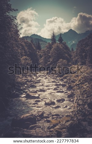 Fast river in a mountain forest - stock photo
