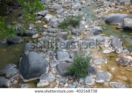 Fast river in a mountain forest on a sunny day