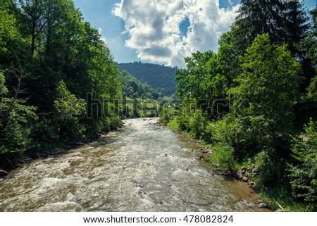 fast river in the  mountains in summer