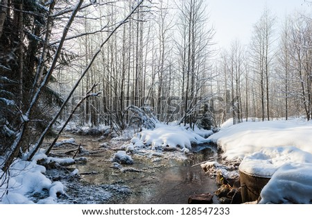 fast small river in winter day, panorama