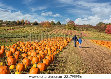 father and child picking out a pumpkin on a farm