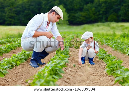 father and son gardening on their homestead - stock photo