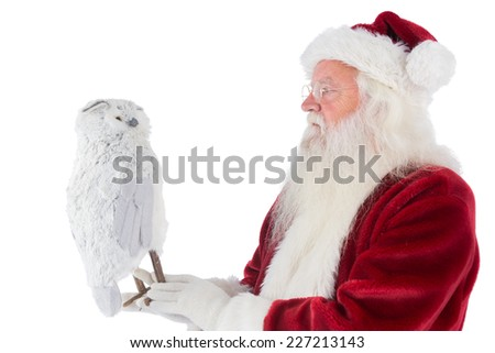 Father Christmas holds an owl on white background