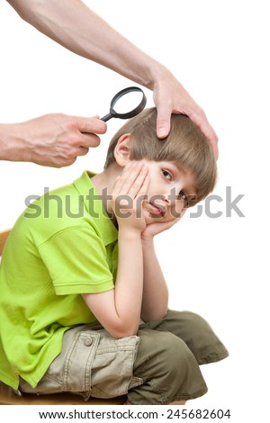 Father looks nits at the schoolboy son - stock photo