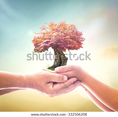 Father son hand hold red big plant on blur abstract sea ocean forest desert on colorful sunset background. Ecology Environment Investment CSR Health Care Harmonious Generosity Trust ROI Cancer concept - stock photo