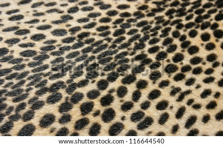 Faux leopard fur texture background - stock photo